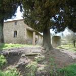 Exterior view of farmhouse I Cipressi near Città di Castello: farmhouse for sale in Umbria, Italy