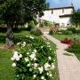 Path to Ulisses House SILVIGNANO, giu,10 - 032