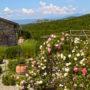 umbria montegabbione estate for sale italy